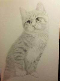 【鉛筆画 8作目】完成までもうちょいかな・・・