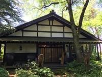【森のコトノハ、野のイロドリ】今井アートギャラリー企画展