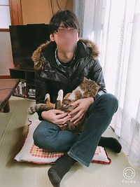 【癒されてきた】やっぱり猫はかわいいね