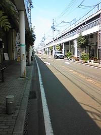 日本海寒鱈まつり(鶴岡・酒田)