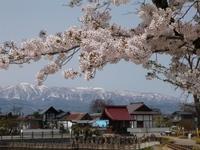 龍興寺沼【葉山遠景】