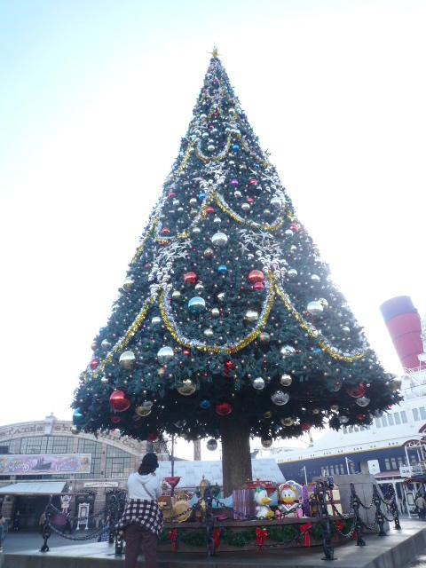 ディズニーシー クリスマス