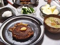 ハンバーグ・豚汁風・おつまみきゅうり・大根おろし・サンふじ