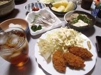 牡蠣フライ・太刀魚の炙り刺身・つくねと豆腐の鍋・大根おろし・サンふじ