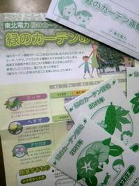 東北電力★緑のカーテン運動