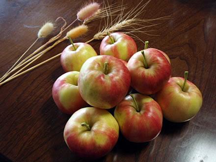 姫りんご・アルプス乙女・「問題です!」はまだ間に合います!
