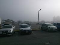 安心して下さい。PM2.5じゃありません‼