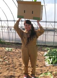 山形名物お漬物の青菜(せいさい)を収穫~♪パートⅢ