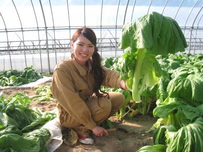 青菜せいさい収穫_007